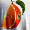 Stüssy, Orange Slice, T-Shirt, Baumwolle, Cotton, Gross real wear, Weiß, White